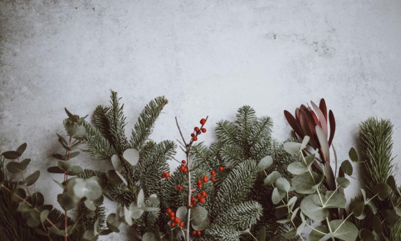 Il miracolo di Natale